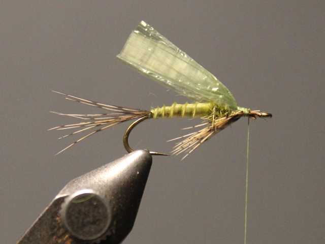 Medallion Biot Wet Fly