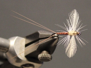 Soft Hackle Spinner
