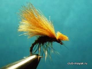 BWO (TH) Emerger