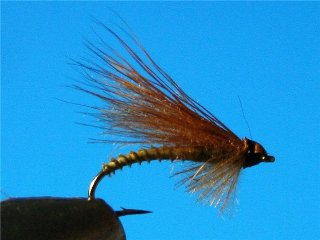 CDC Caddis vr