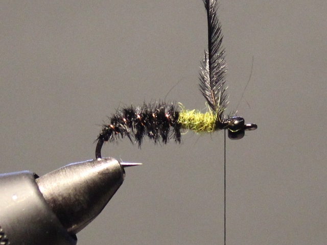 Glass Bead Cased Caddis