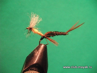 Sweeper BWO Emerger
