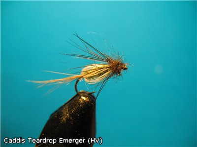 Caddis Teardrop (HV)