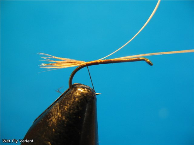 Wet Fly Variant